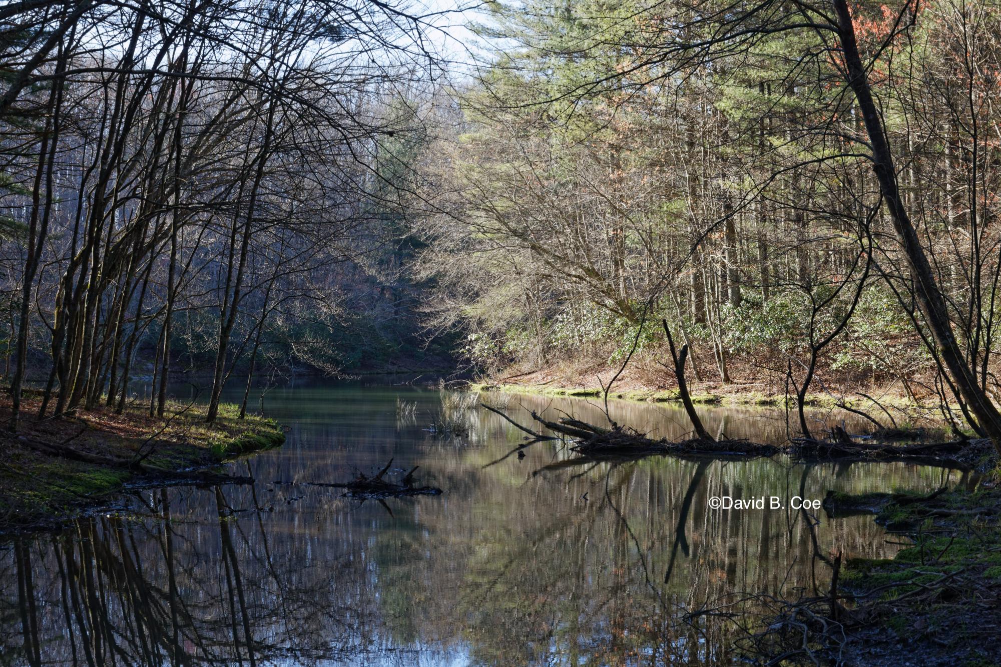 Jackson Lake, Early Spring, by David B. Coe
