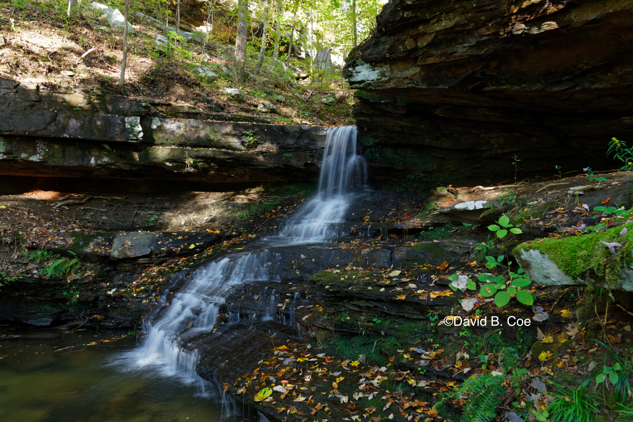 Morgan's Steep Cascade, Fall, by David B. Coe