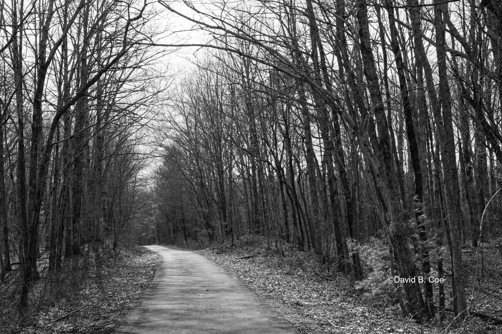 A Winter's Walk, by David B. Coe