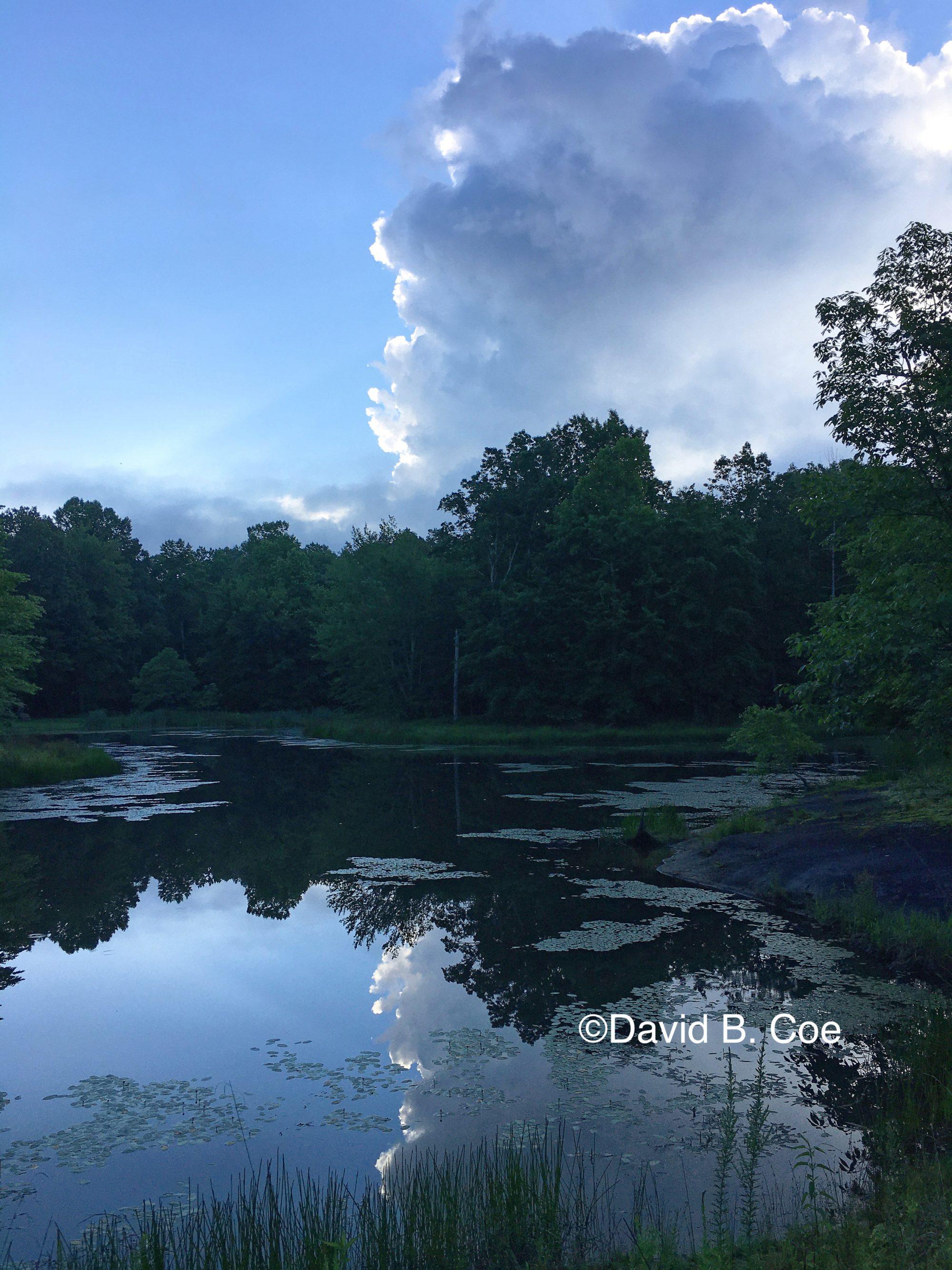 Morning Cloud Reflection, by David B. Coe