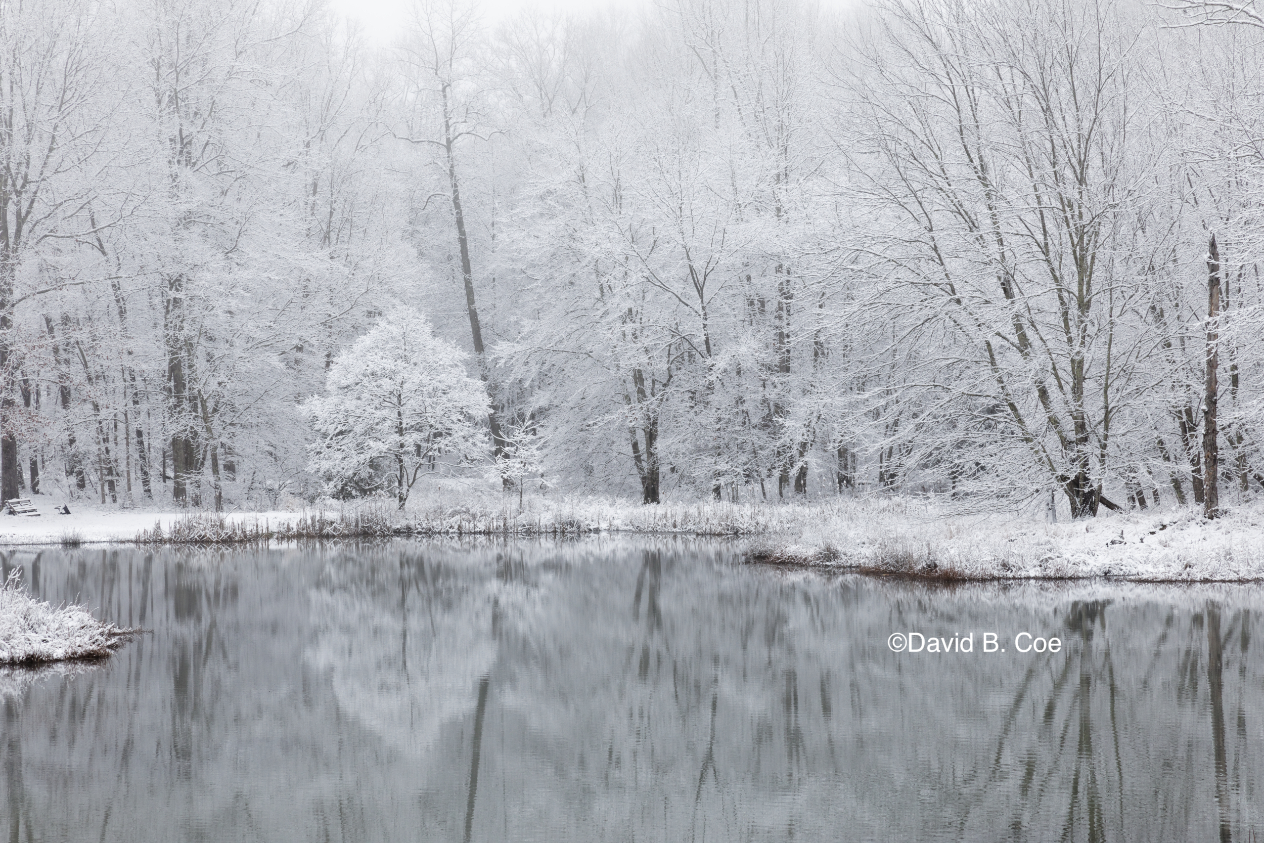 Winter Reflections, by David B. Coe