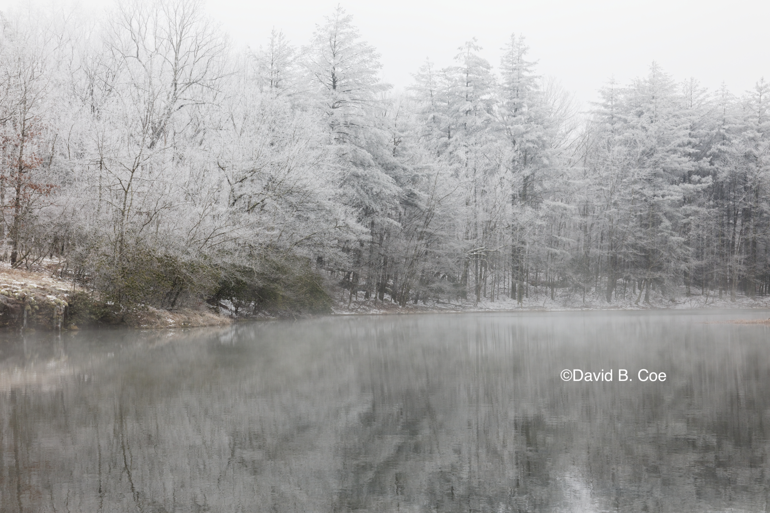 Jackson Lake with Frost and Mist II, by David B. Coe